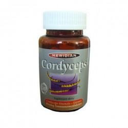 Cordyceps Sinensis ekstrakt 60 kaps